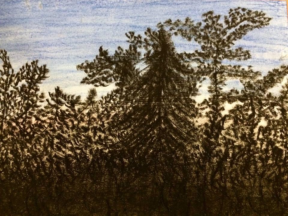 Schwarz und Blau, Wald, Pastellkreide, DIN A 3 (Nov. 2015)