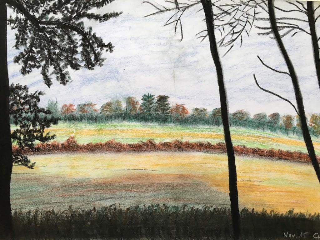 Herbstliche Landschaft, Pastellkreide, DIN A 3 (Nov. 2015)