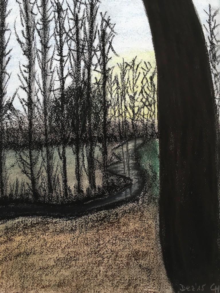 Herbstlicher Wald, Spiegelung, Pastellkreide, DIN A 3 (Dez. 2015)