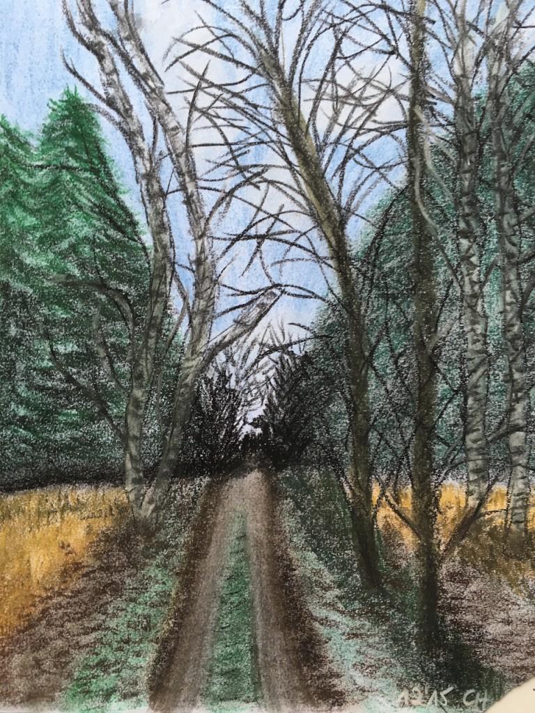 Herbstlicher Wald, Pastellkreide, DIN A 3 (Dez. 2015)