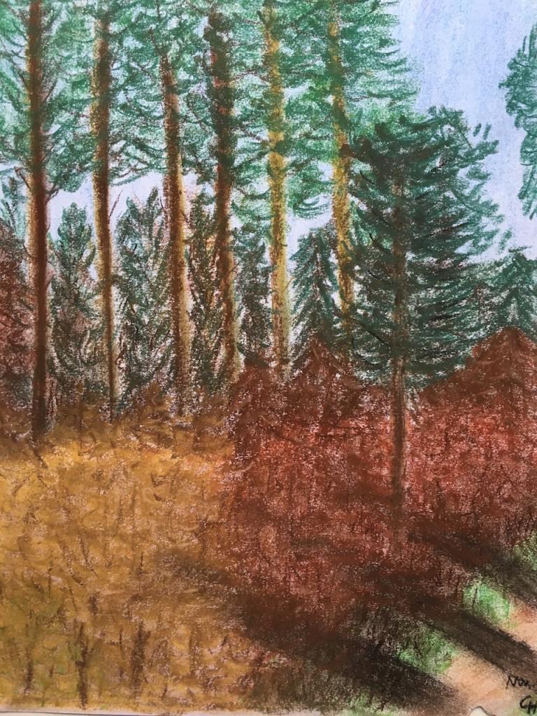 Herbstlicher Wald, Pastellkreide, DIN A 3 (Nov. 2015)
