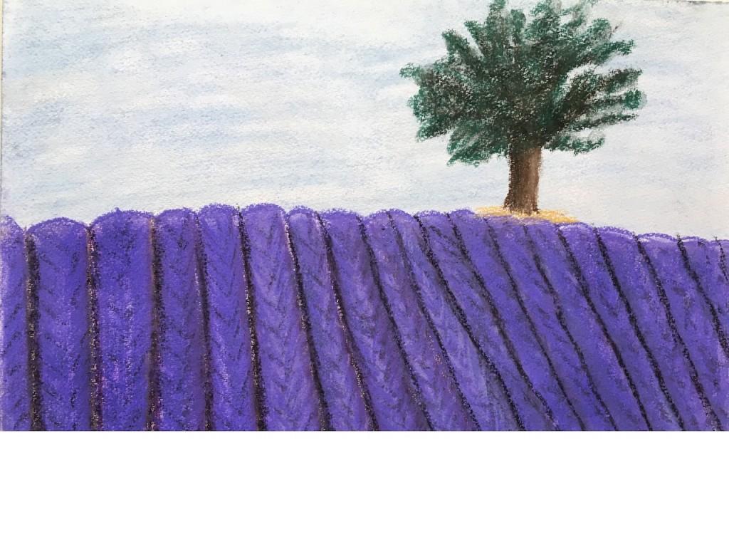Lavendelfeld, Pastellkreide, DIN A3 (Dez. 2015)