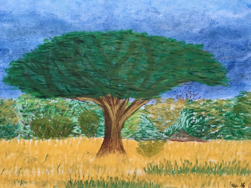 Afrika, Baum, Pastellkreide, DIN A3 (Jan. 2016)
